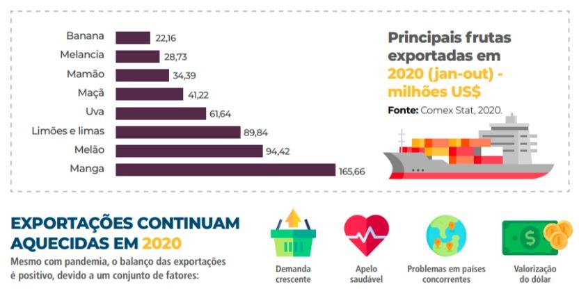exportações hortifruti cepea 2020