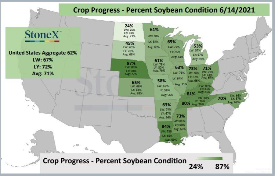 Condições das lavouras de soja nos EUA - Fonte: StoneX
