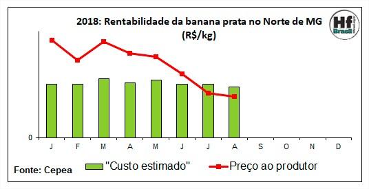 Rentabilidade da banana - Cepea Hortifruti