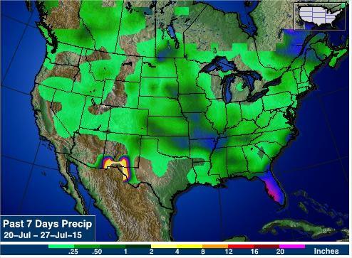 Acumulados de Chuvas nos últimos 7 dias nos EUA - Fonte: AgWeb