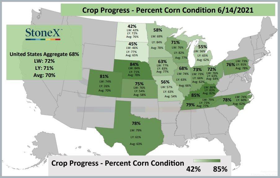 Condições das lavouras de milho nos EUA - Fonte: StoneX