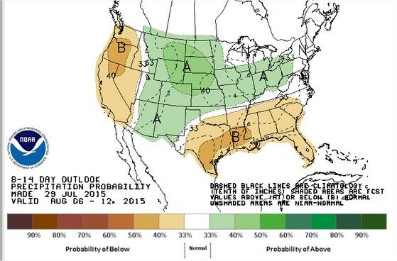 Previsão de chuvas para os EUA de 6 a 12 de agosto - Fonte: NOAA