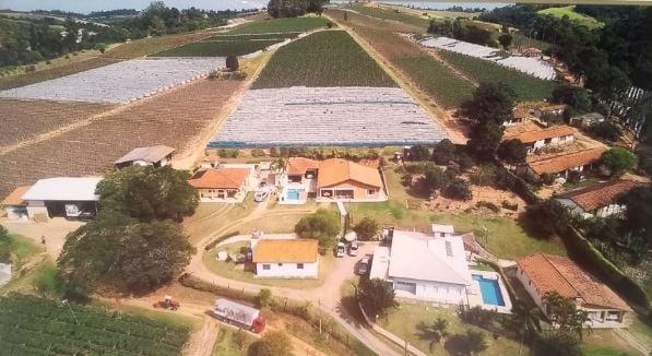 Vista aérea lavoura Carlos Pagotto