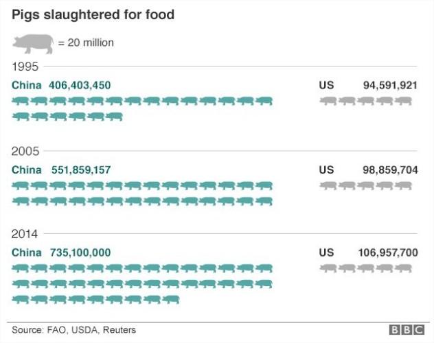 Abate de suínos China x EUA