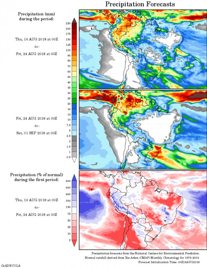 Mapa com a precipitação acumulada para o período de 16 de agosto até 01 de setembro - Fonte: National Centers for Environmental Prediction/NOAA