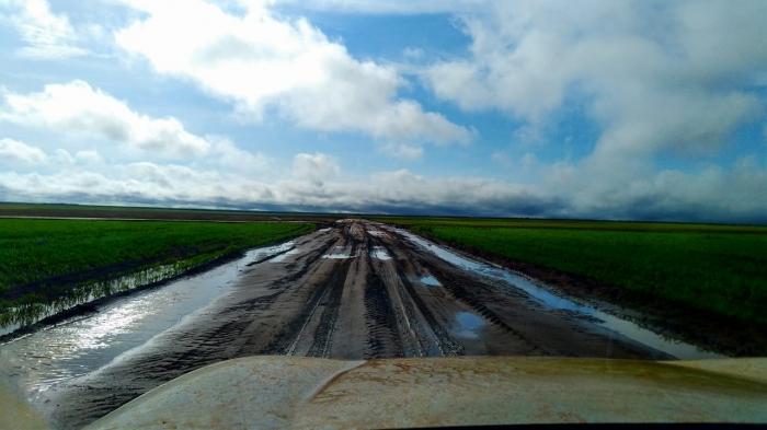 Chuvas em Palmeira do Piauí (PI) - Enviado por Almir Michelan