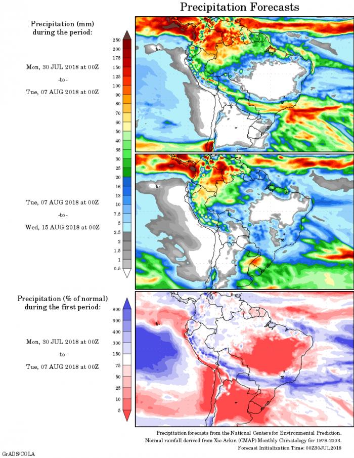 Mapa com a precipitação acumulada para o período de 30 de julho até 07 de agosto em todo o Brasil - Fonte: National Centers for Environmental Prediction/NOAA
